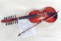 Viola d'Amore by Vogelsangs