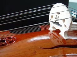 Viola d'Amore; sympathetic strings